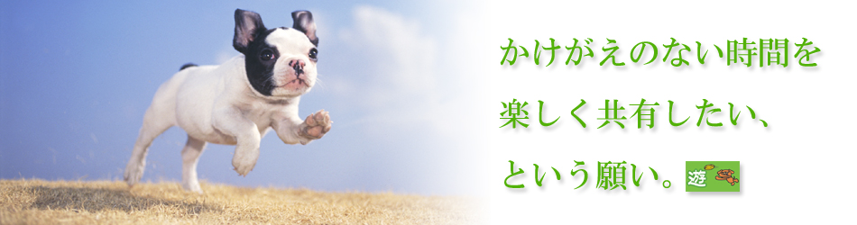 wan塾・参加メンバー「遊」